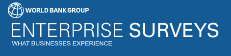 Enterprise Surveys Logo